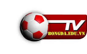 Bong da số 24h – Báo bóng đá Online