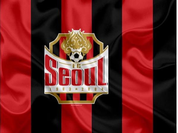 Câu lạc bộ bóng đá Seoul – Lịch sử, thành tích của CLB